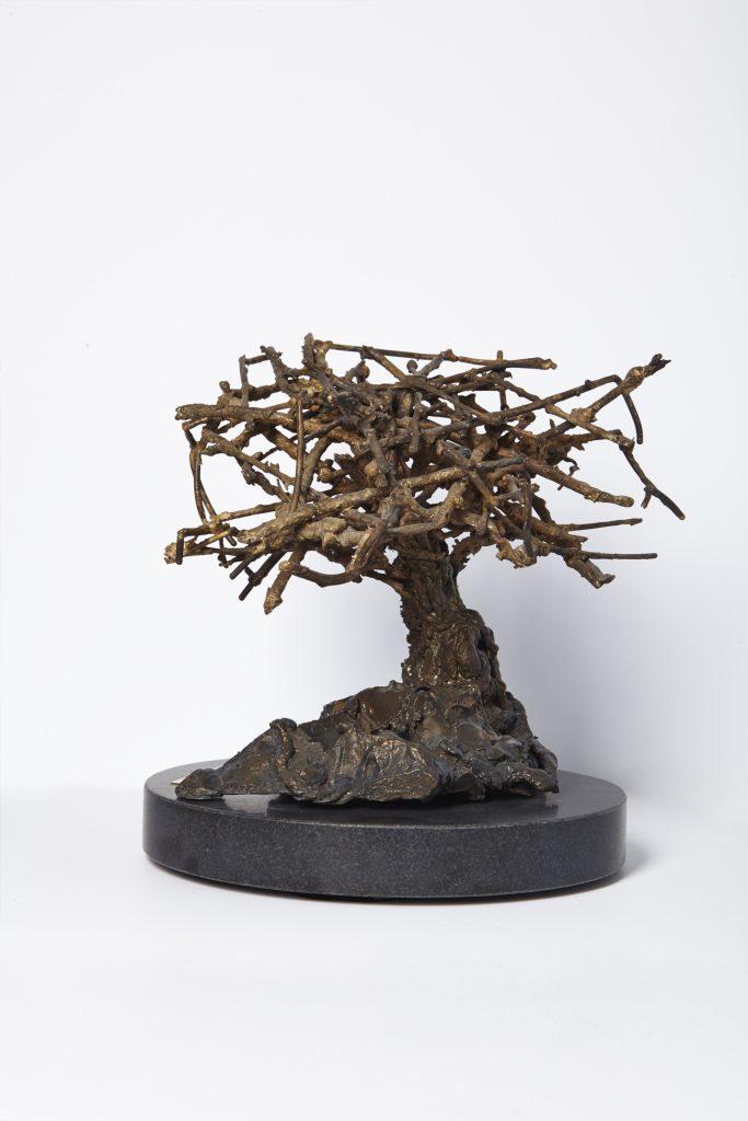 Tree of Life, Acacia II